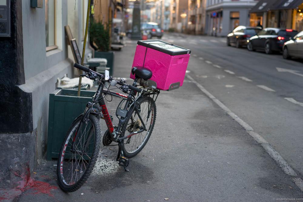 fodora-bici-solo