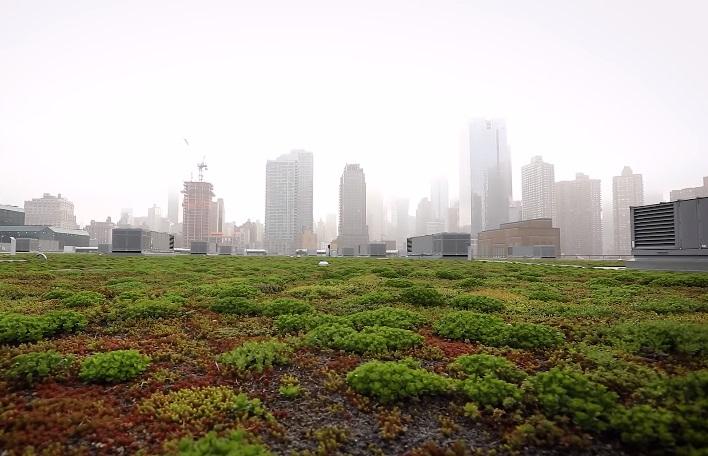Nasce Clima Comune, alleanza green tra le città europee