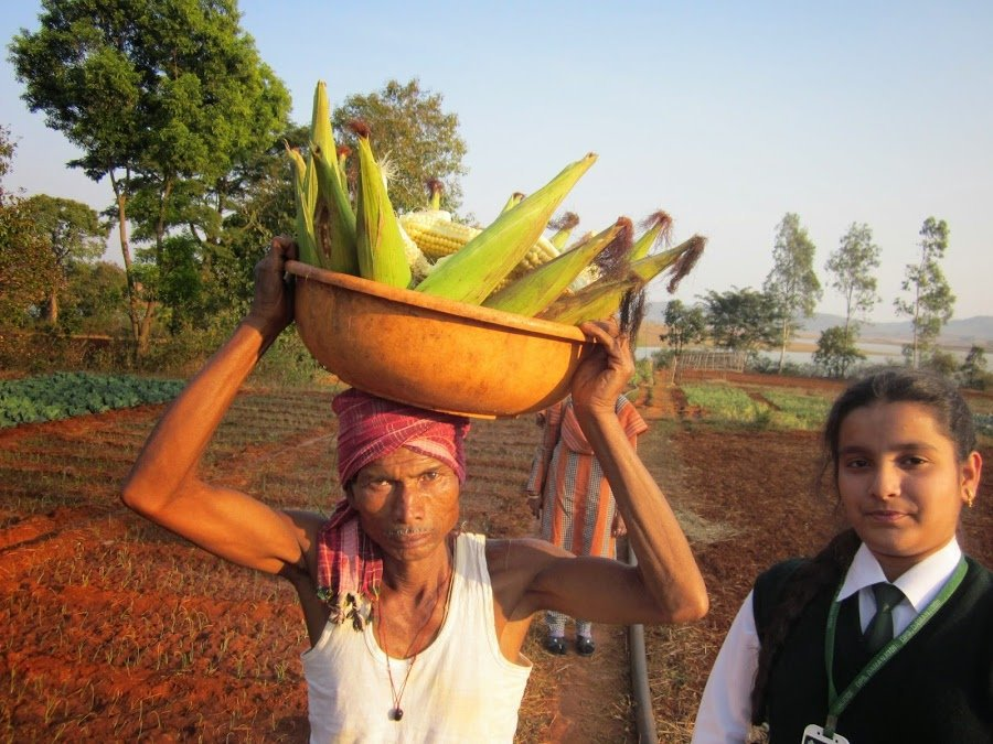 La 14enne Lalita che purifica l'acqua con il mais, e vince la Google Science Fair_1