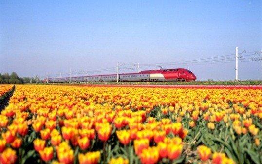 Olanda-treni-eolici-538x336