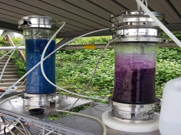 Biometano3-593x443