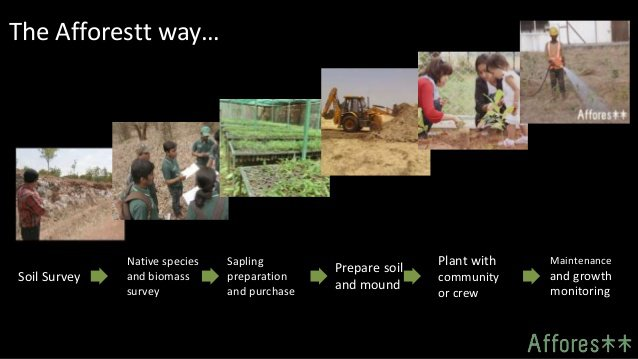 afforestt-we-create-forests-5-638