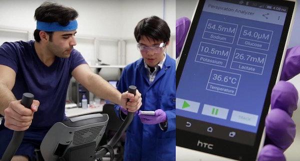 Un ricercatore controlla sullo smartphone i parametri inviati dal sensore. Fotografia UC Berkeley