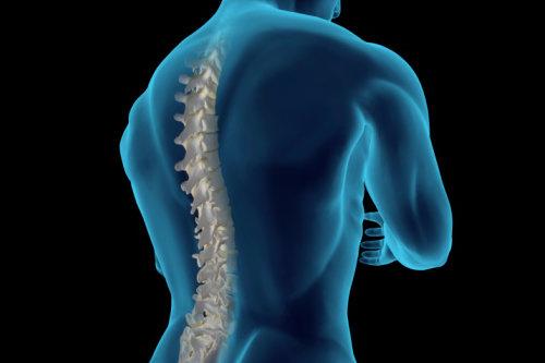 lesioni-midollo-spinale