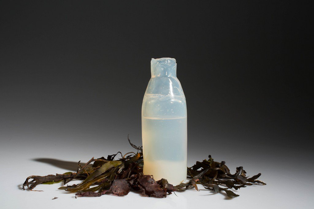 Algae-Water-Bottle