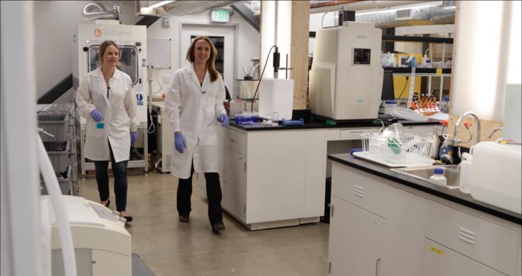 Prellis Biologics, la startup che stampa organi umani in 3D
