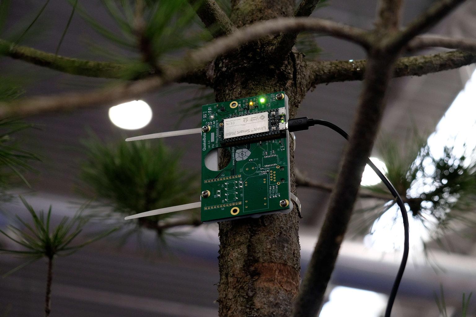Treevoice, il dispositivo per monitorare la stabilità degli alberi