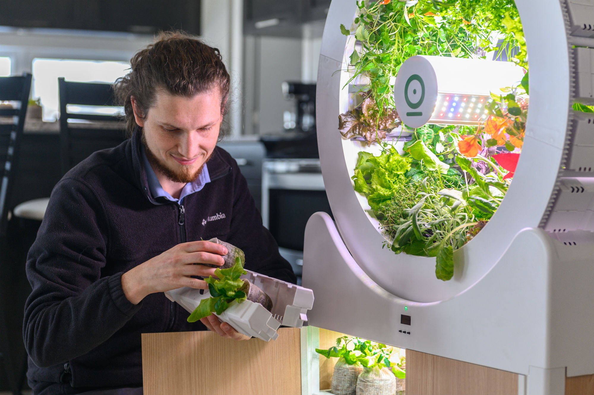 Coltivare In Casa Piante Aromatiche ogarden smart, frutta e verdura da coltivare in casa