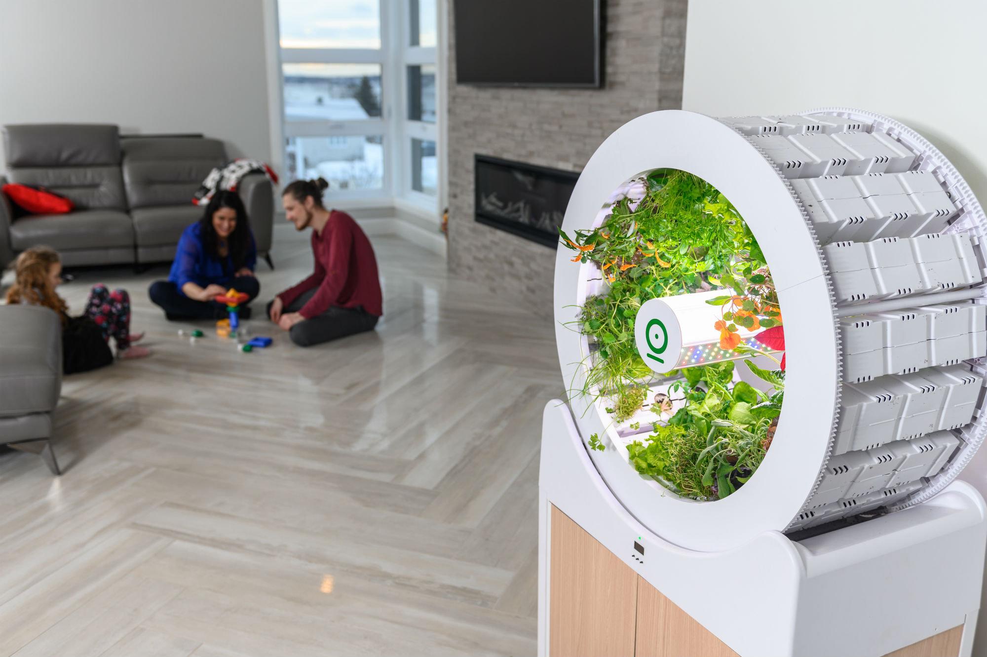 OGarden Smart, frutta e verdura da coltivare in casa