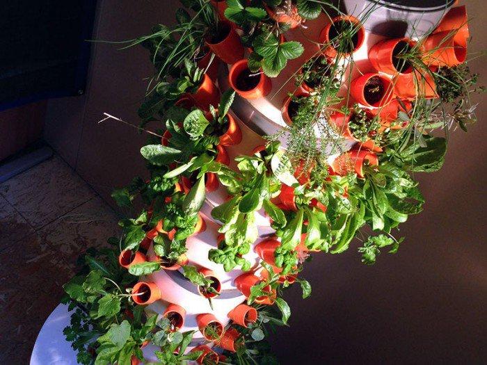 foto 23-03-15 16 53 38-crop-u10417