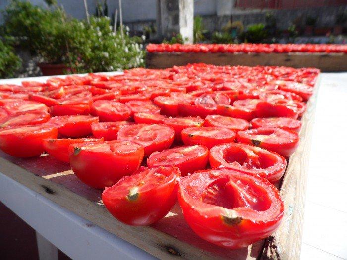Per i pomodori la concorrenza è cinese