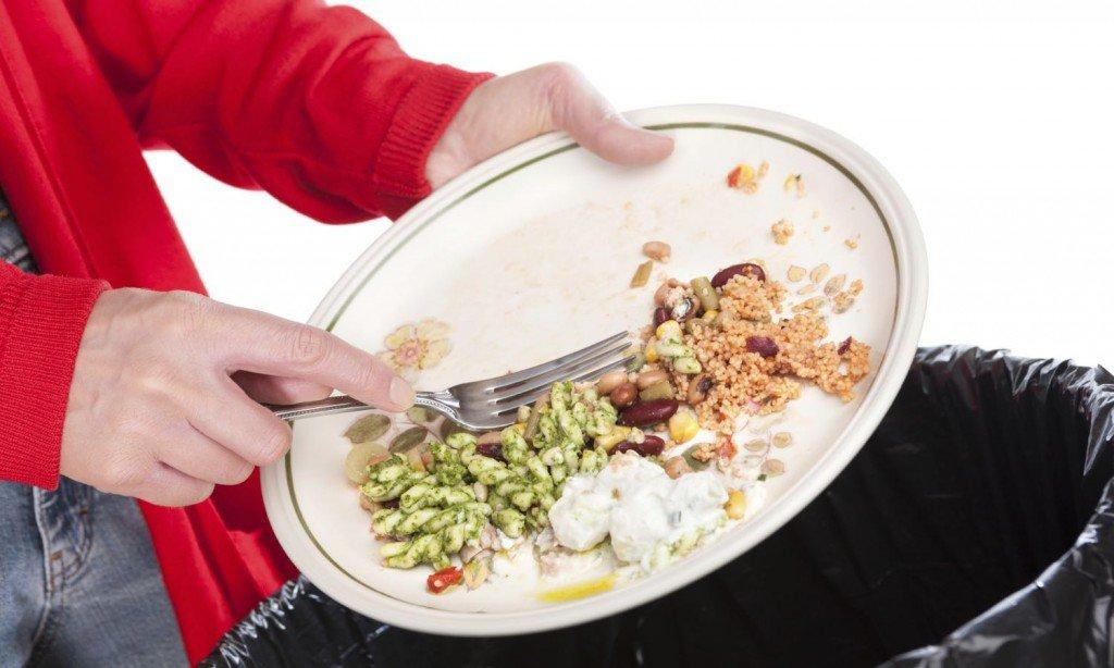 pingree_food_waste