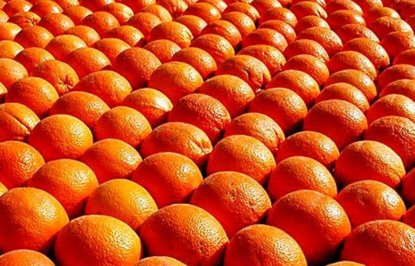 cibo_arance_2