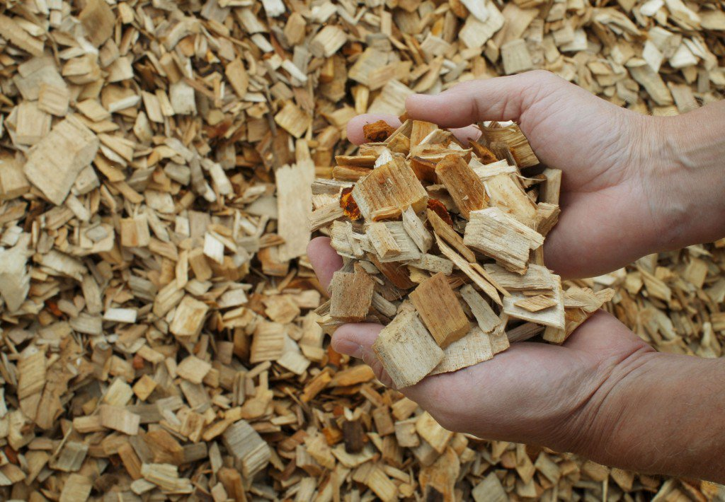 wood-pulp