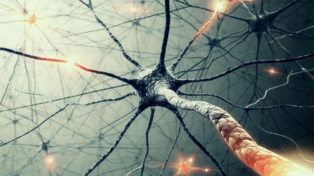 neural_networks-jpeg