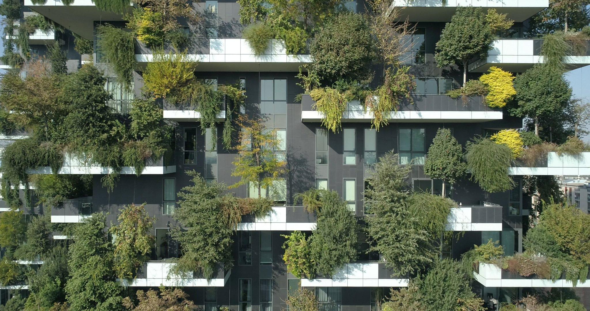 Forestami, il progetto per piantare 3 milioni di alberi a Milano