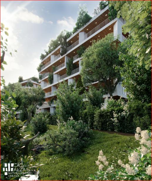 Airlite, come è nata la pittura 100% green ed ecosostenibile