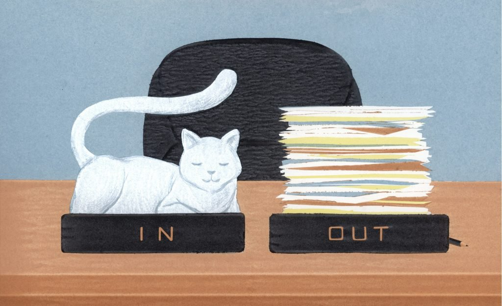 miao-in-out