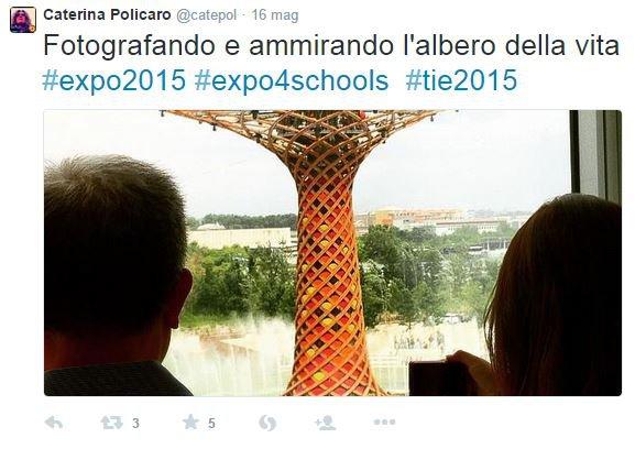 expo 8